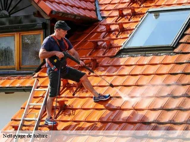 Nettoyage de toiture à Saint Germain De La Riviere tél: 05.33.06.18.84
